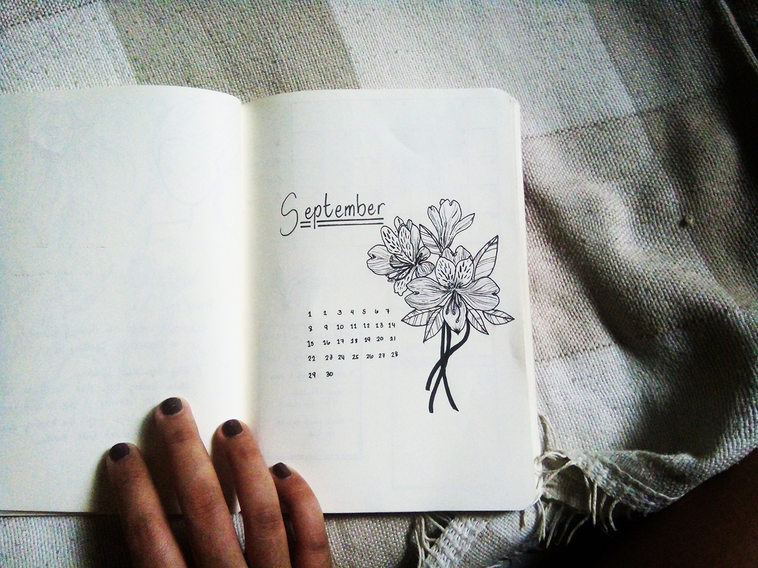 Picture of bullet journal cover page with a pen lineart illustration of alstroemeria flowers