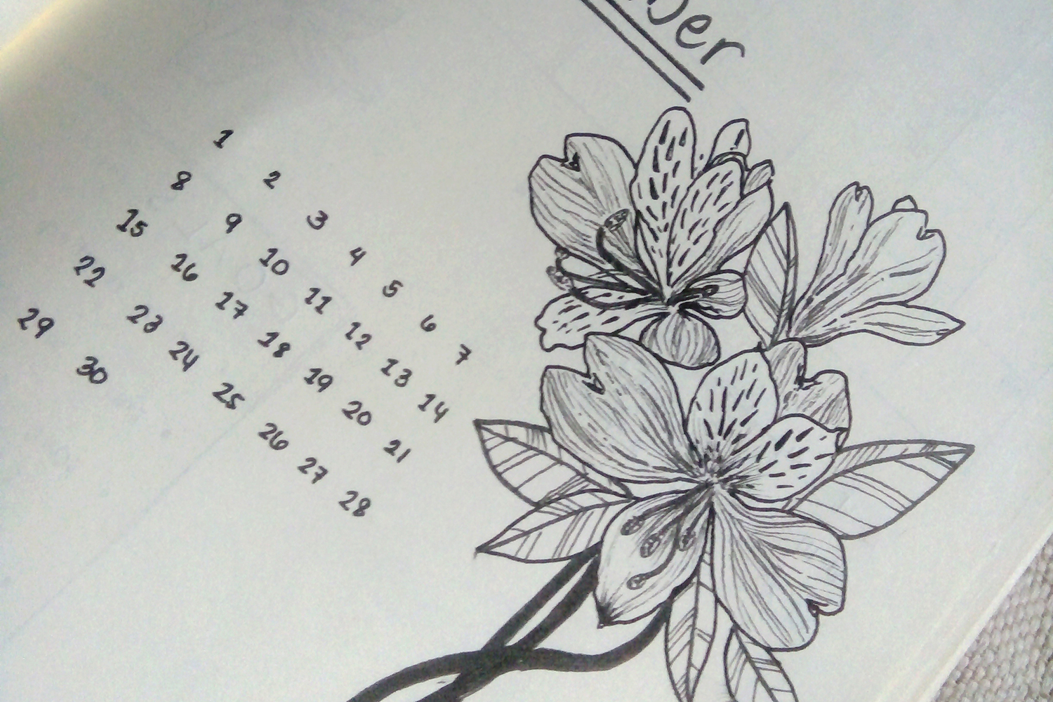 A closeup shot of the floral lineart